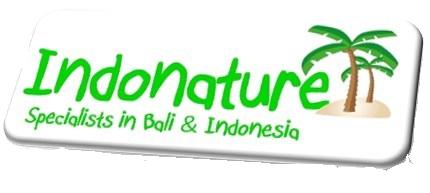 Rosa Banda, INDONATURE TRAVEL, Bali, Indonesia